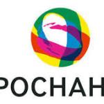Роснано логотип