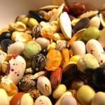 импортозамещение семян