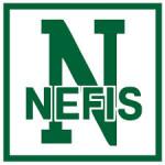НЭФИС логотип